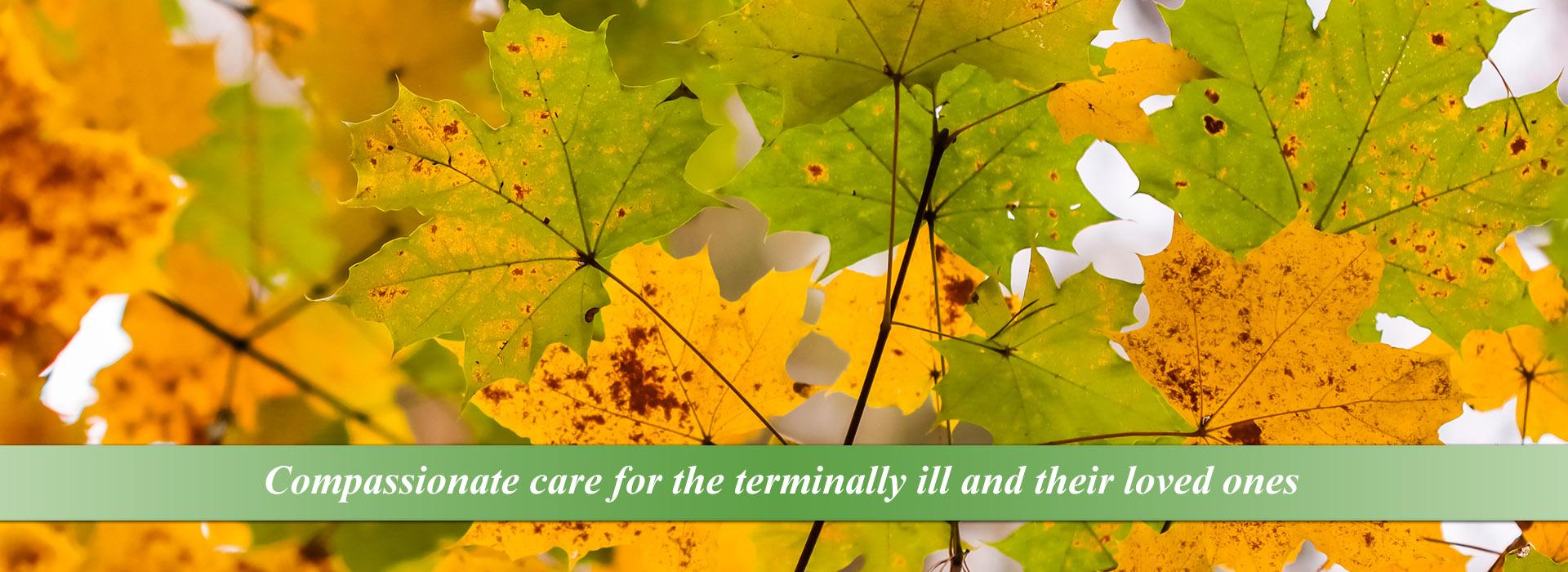 Hospice of Dubuque Fall